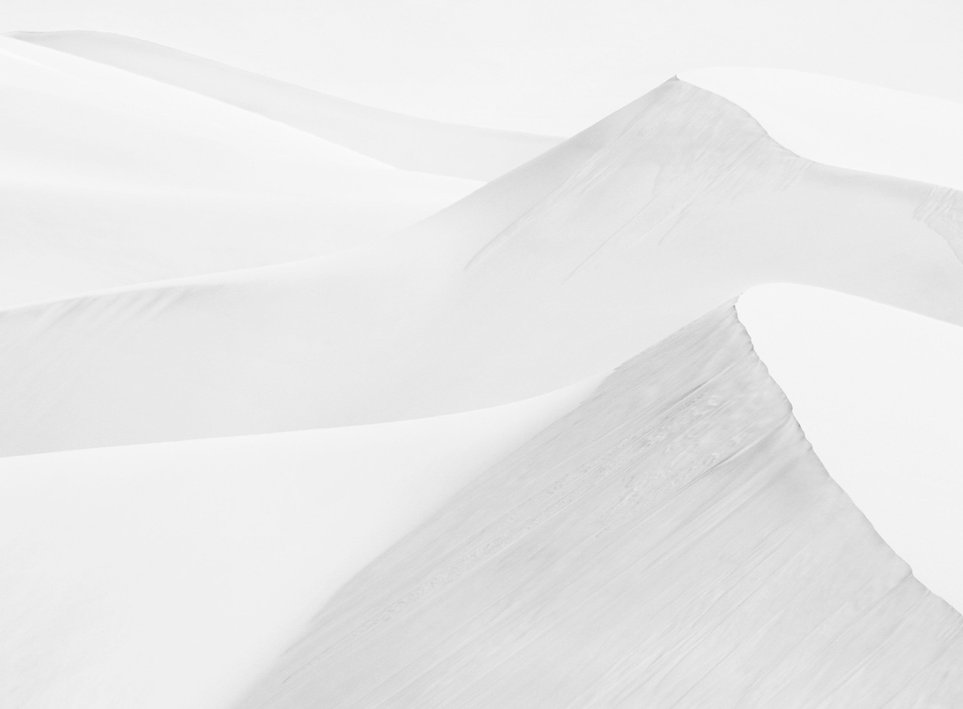 Dunes Landscapes Evolving Drew Doggett