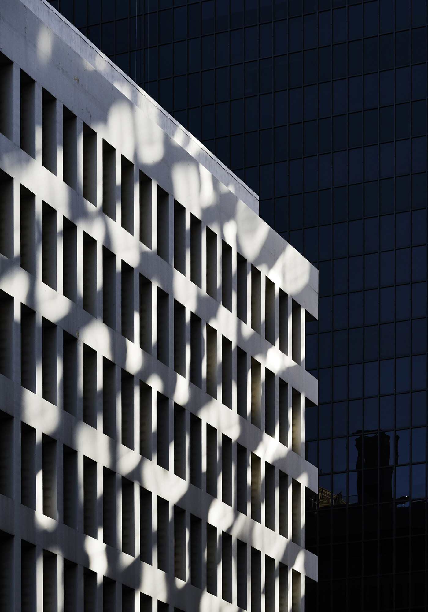 Wilshire Boulevard Série Photographie Adrian Gaut