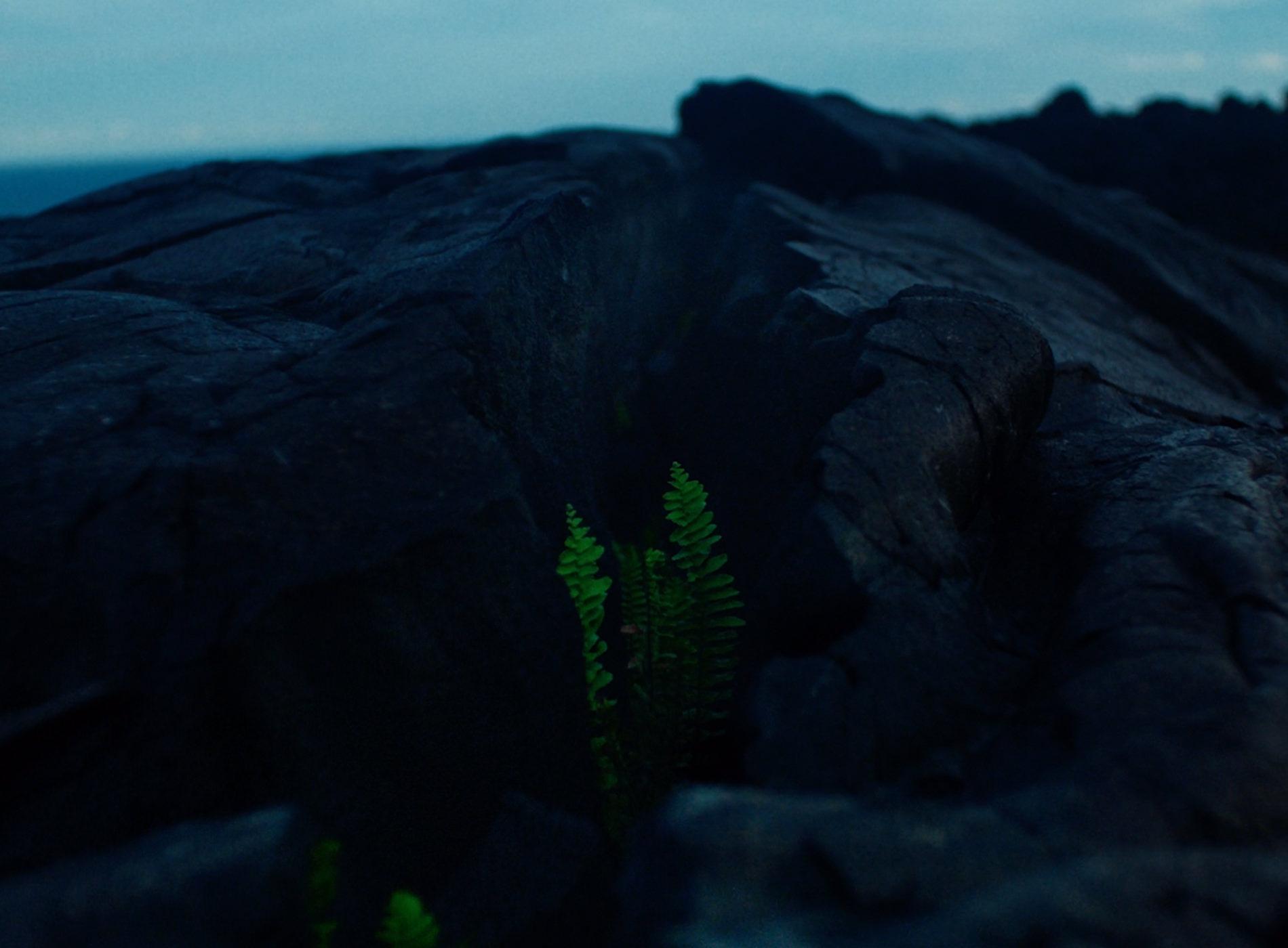 Film Video Kaholoʻaʻā Bradley Tangonan Hawai Ranger Park