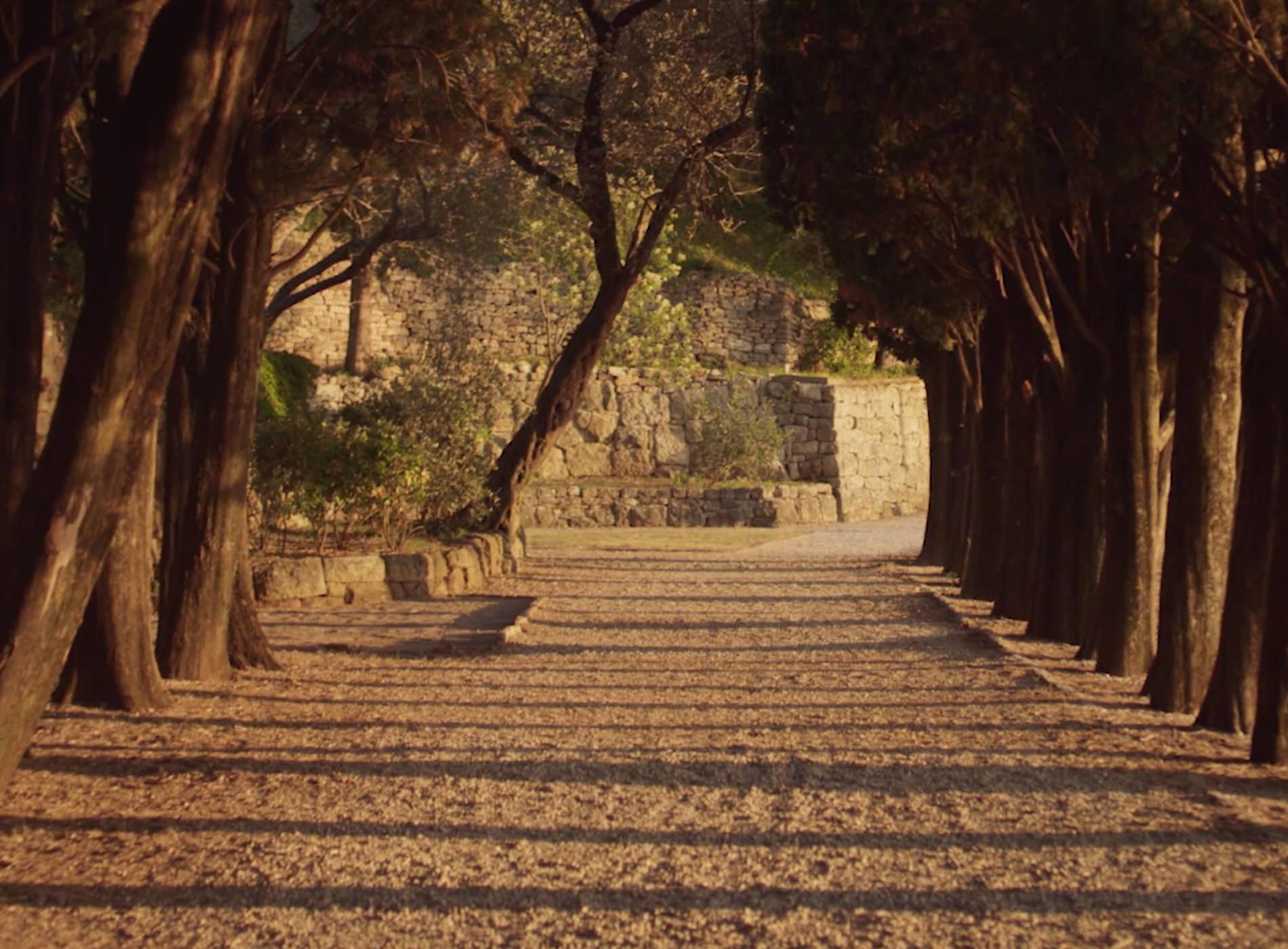 Aman Sveti Stefan Montenegro Hôtel Arbres Cyprès