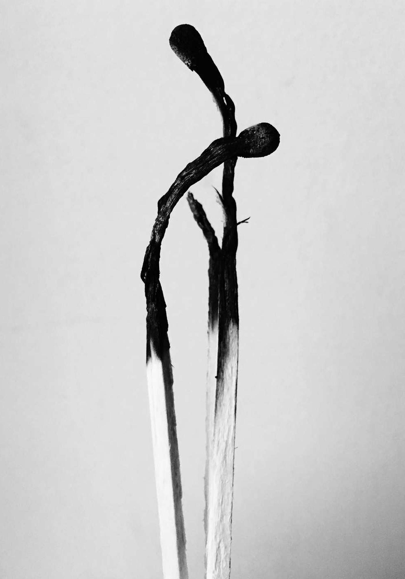 Jack Davison Photographie Nature Morte Noir et Blanc