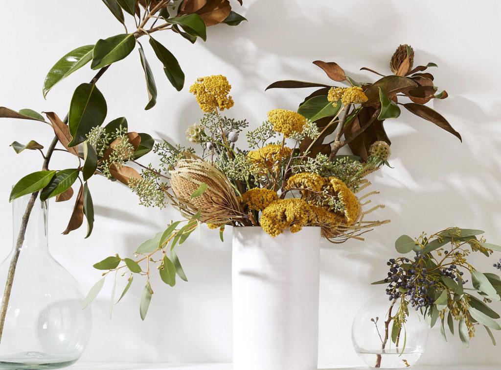 Bloomist Collections de Botanique Décoration