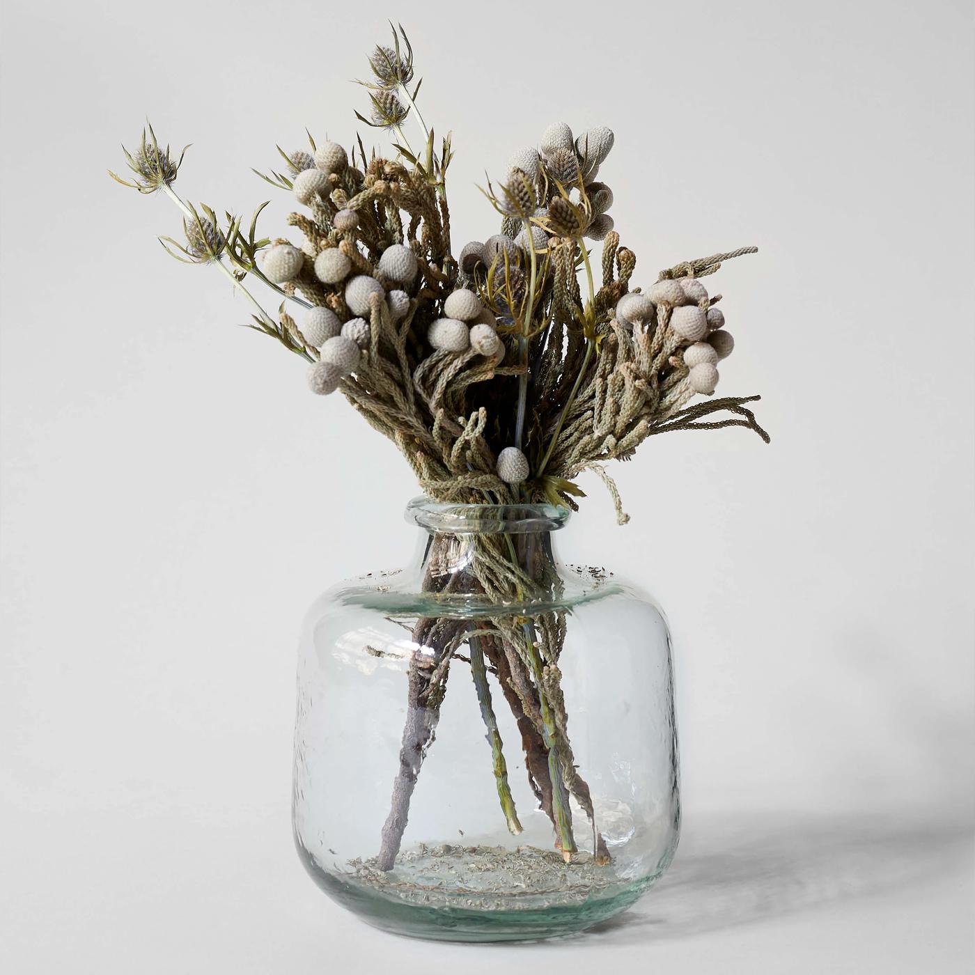 Bloomist Collections de Botanique Brunia Argent Séchée