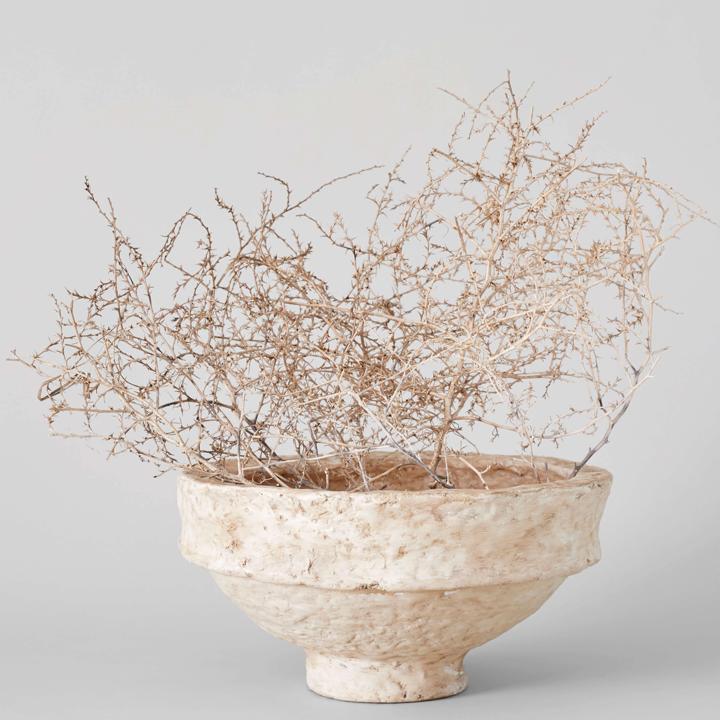 Bloomist Collections de Botanique Tumbleweed Virevoltant