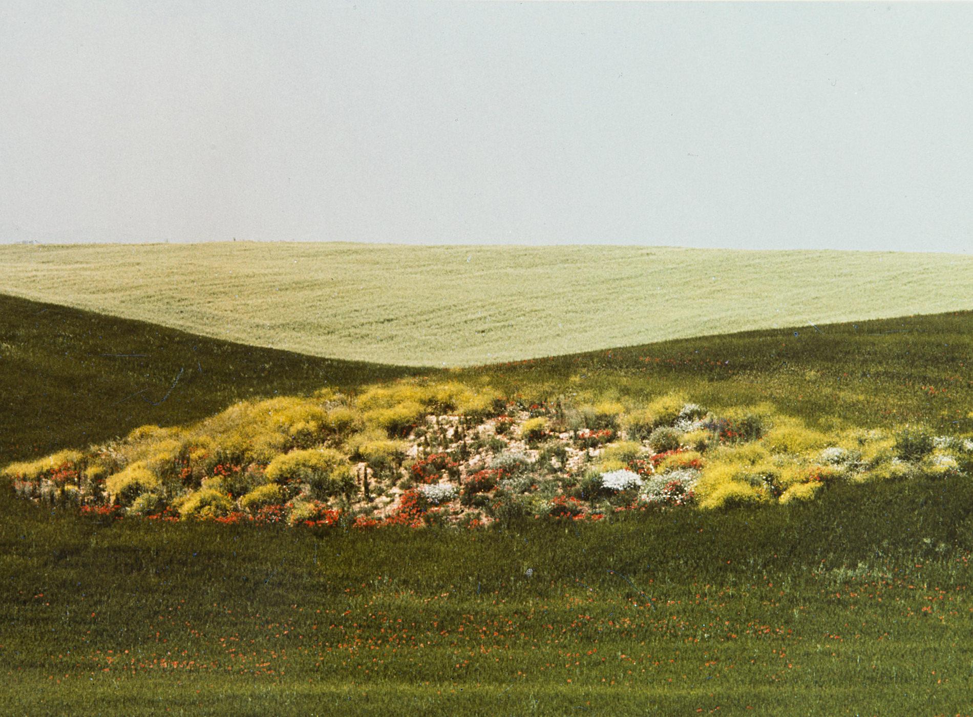 Franco Fontana Photographie Paesaggio 1975