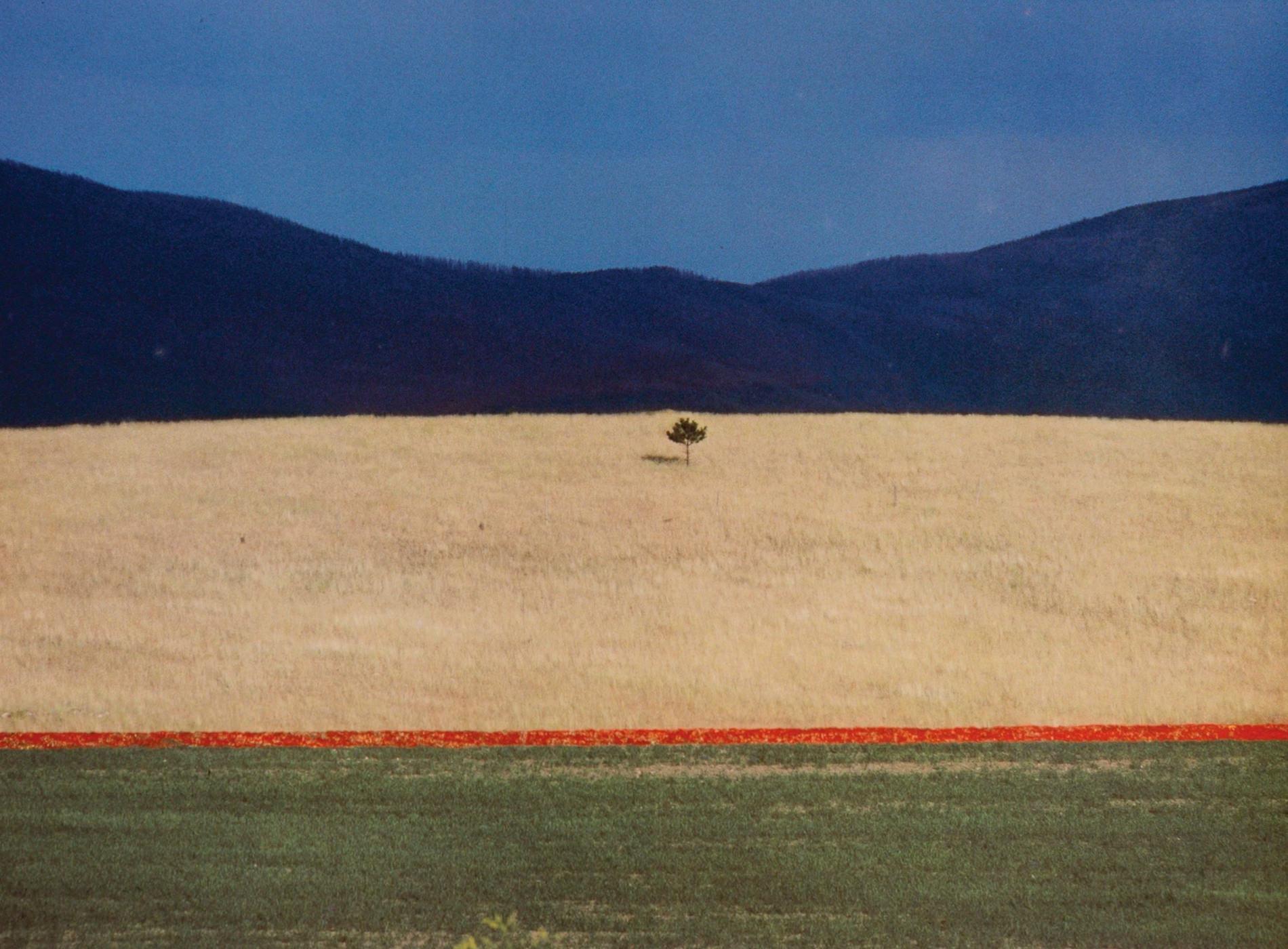Franco Fontana Photographie Paesaggio 1990