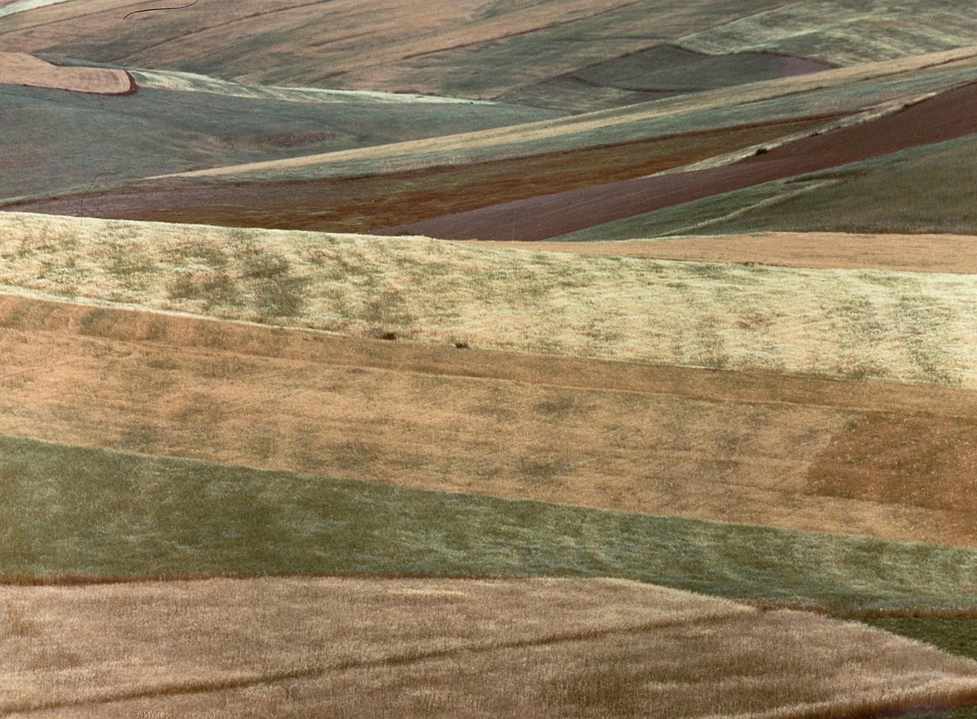 Franco Fontana Photographie Paesaggio 1994