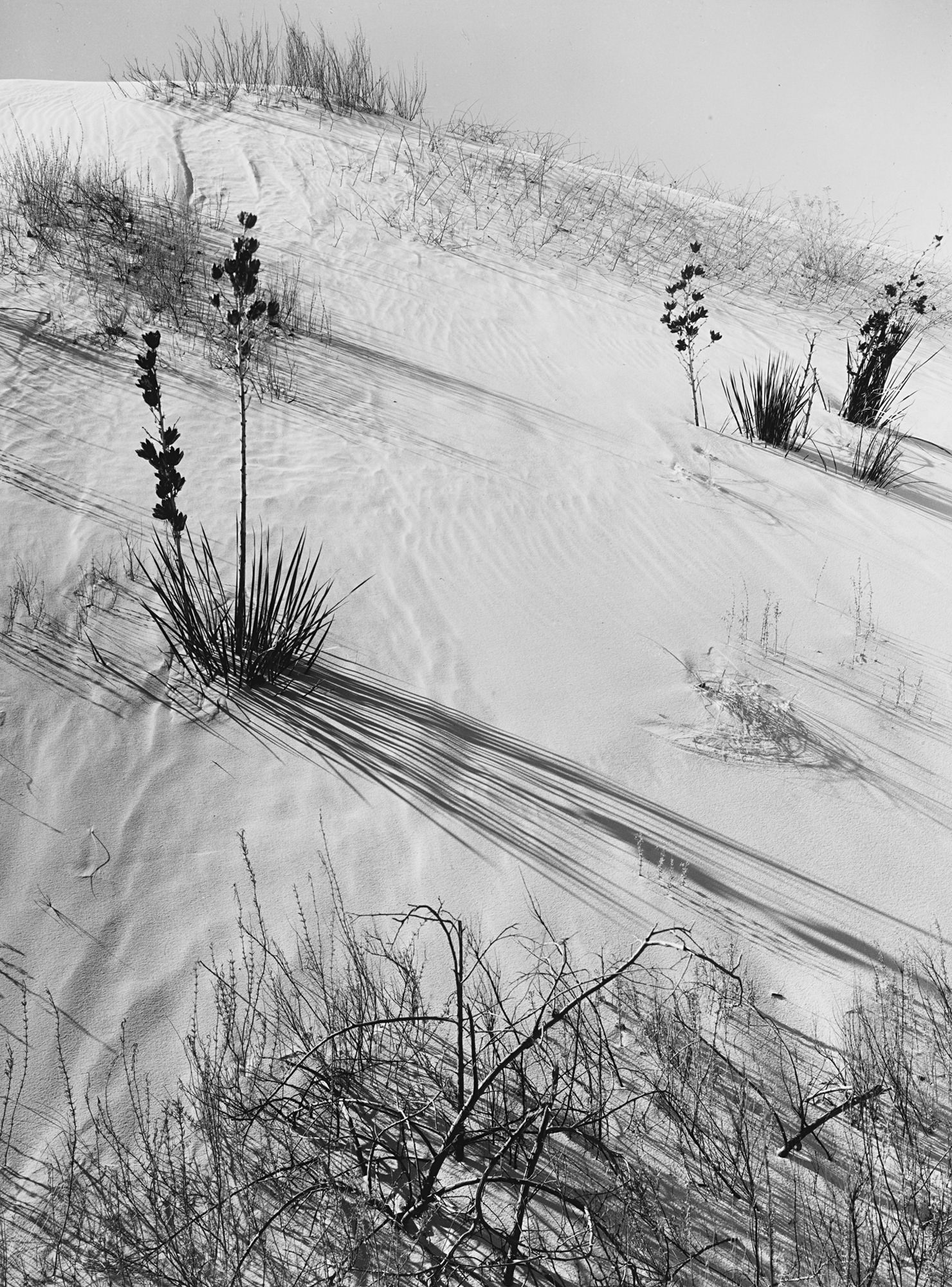 Ansel Adams Dunes Hazy Sun White Sands National Monument New Mexico 1941