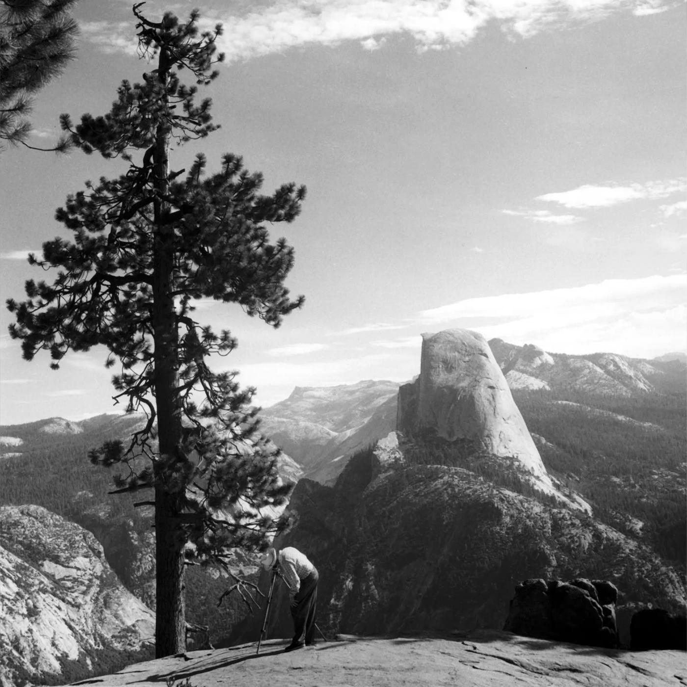 Imogen Cunningham Ansel Adams Yosemite 1953