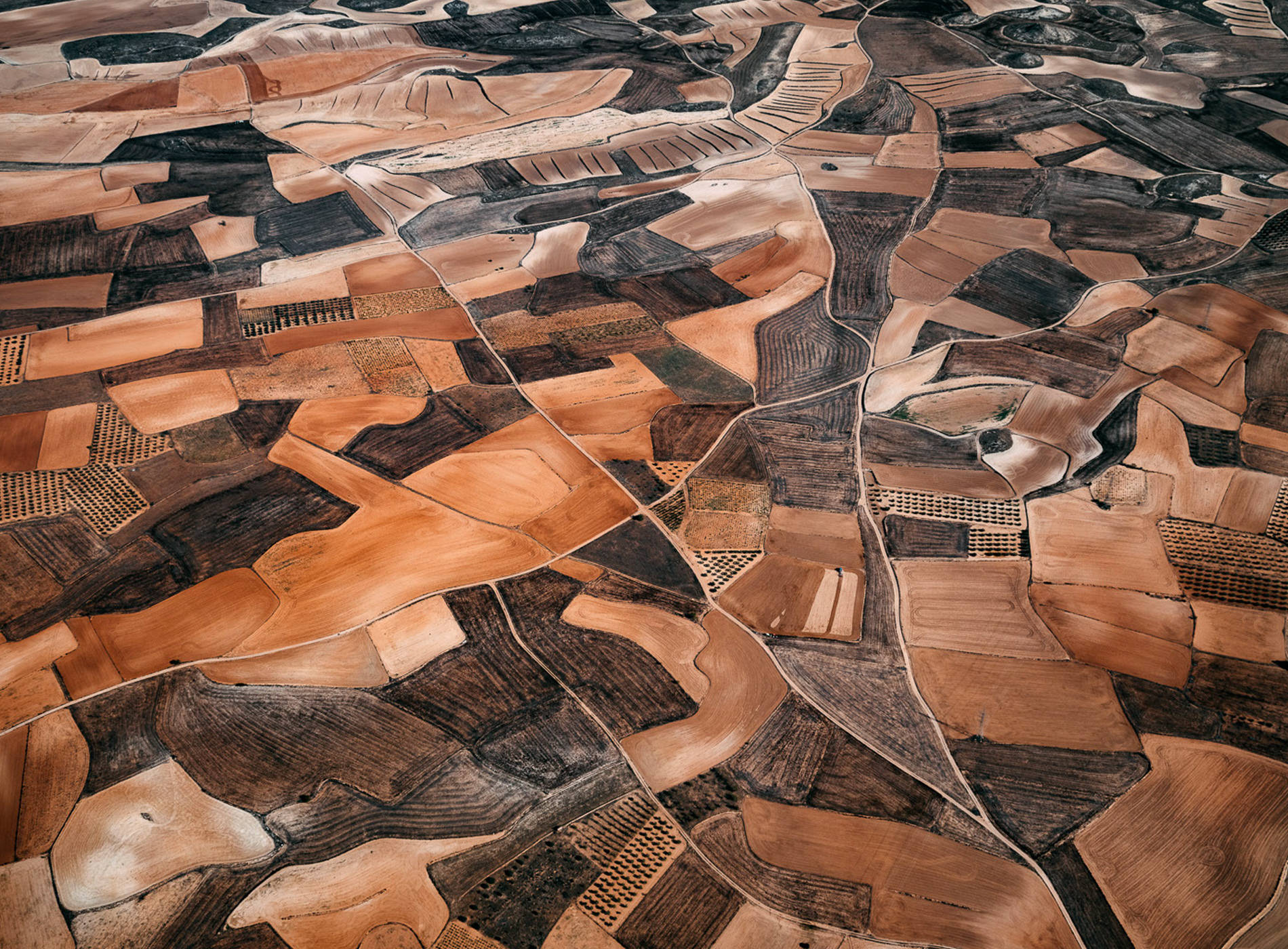 Tom Hegen Photographie The Spanish Farmland Series