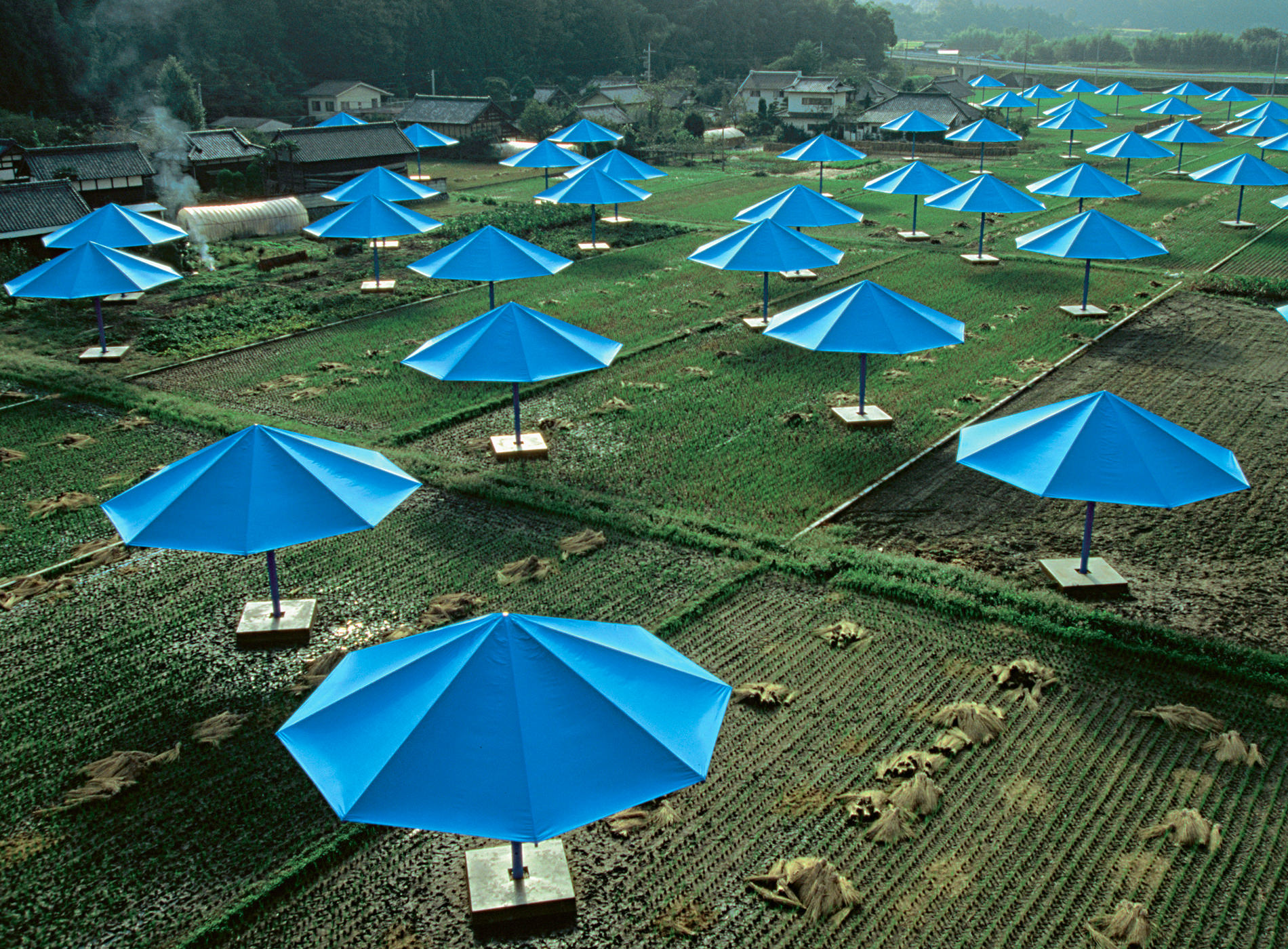 Christo. The Umbrellas, Japan-USA