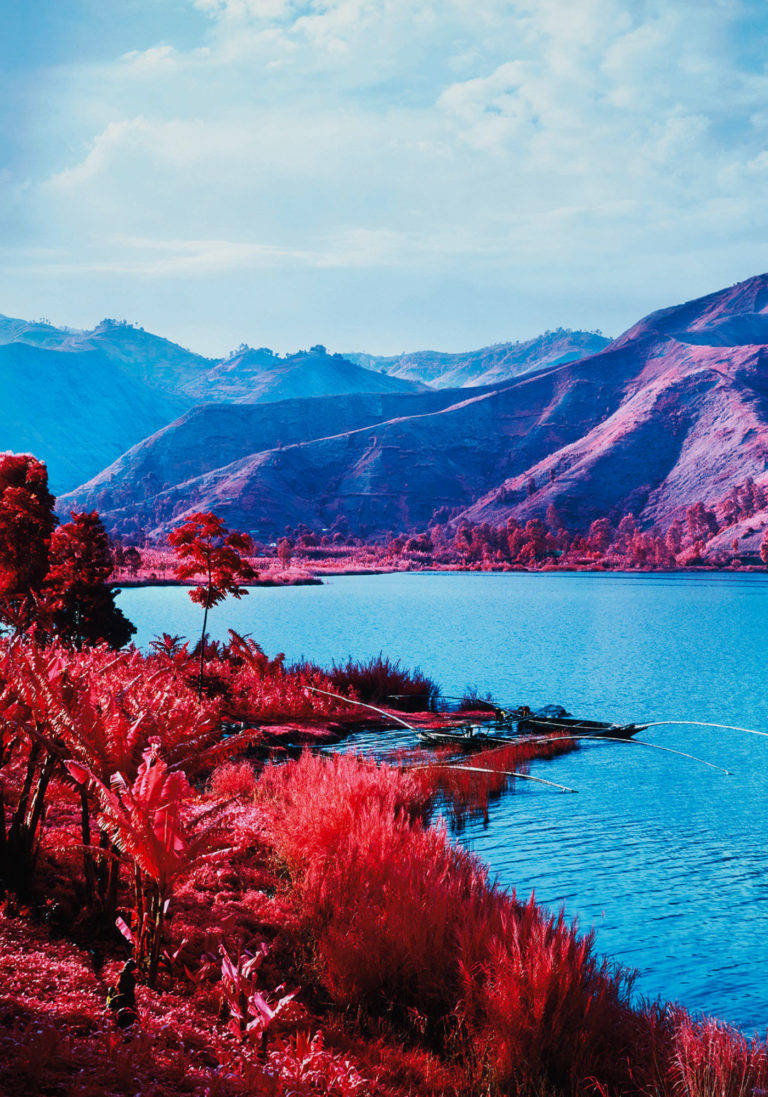 Richard Mosse Photographie Series Infra Kodak Aerochrome