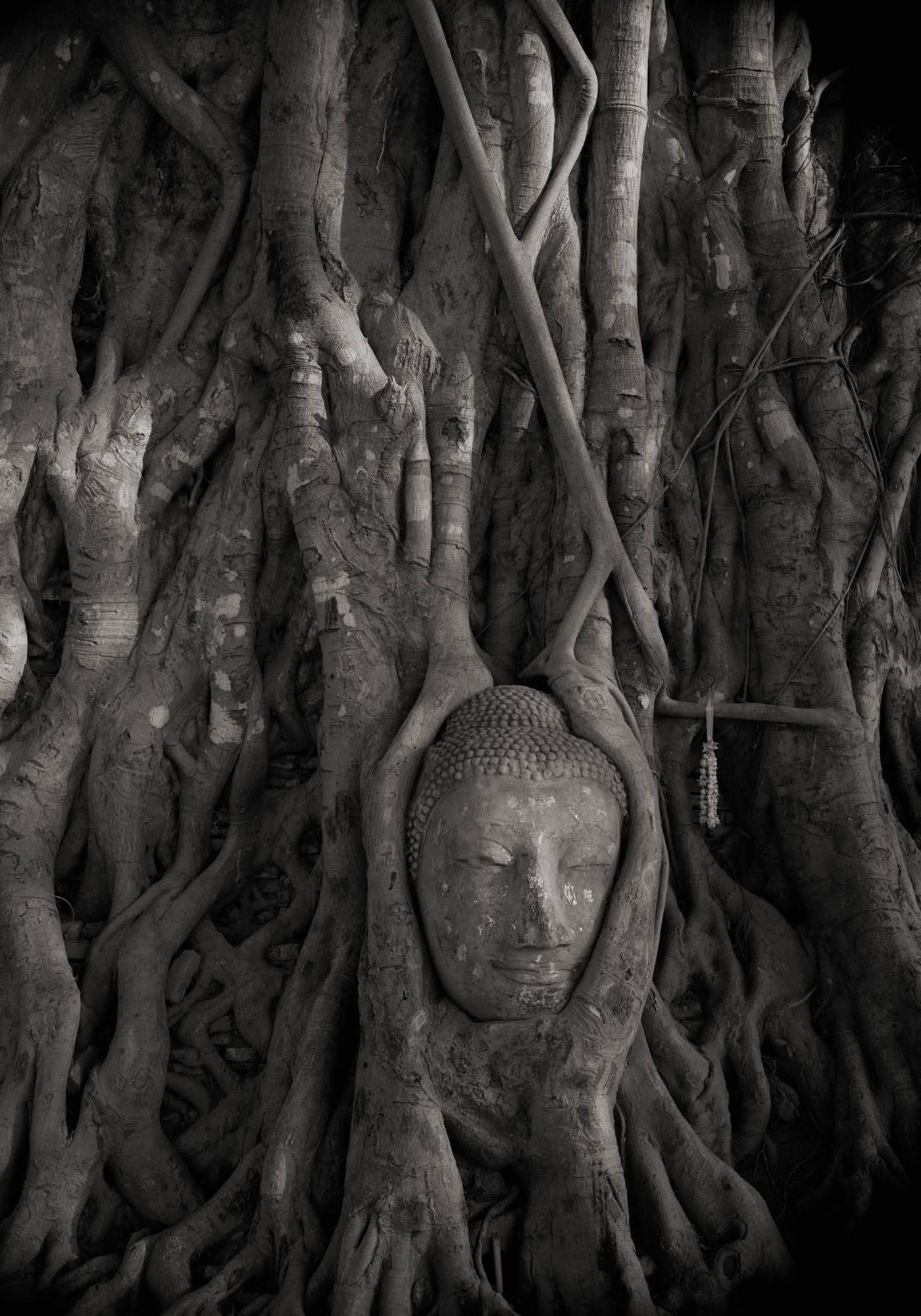 Kenro Izu Photographie Sacred Places Howard Greenberg Gallery